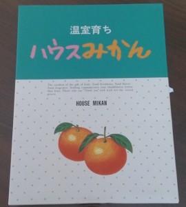 神奈川ミカン1
