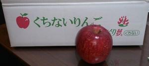 口内りんご1