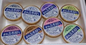 栗駒高原アイス1
