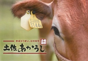 土佐あか牛1