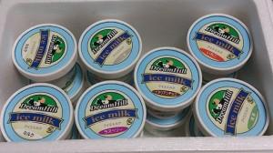 アイスドリーム1
