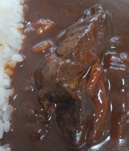 玉ねぎと鶏もも肉の黒カレー3