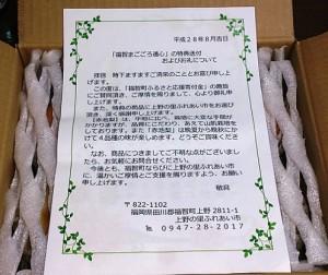 2016 赤池梨幸水1