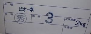 2016 天童ピオーネ2